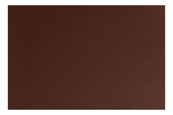 Allante | Chocolate by Morbern Europe | Faux leather