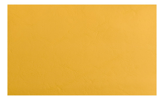 Allante | Honey by Morbern Europe | Faux leather