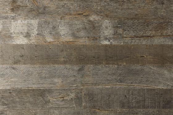 American Reclaimed   Oak, Grey by Imondi   Wood panels