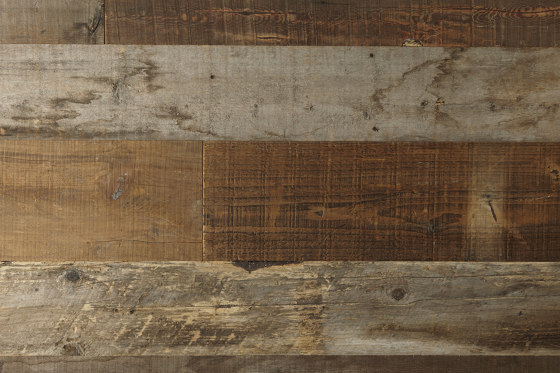 Oriental Reclaimed | Pine, Raw by Imondi | Wood panels