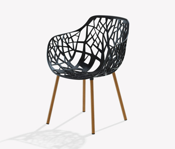 Forest dining armchair with legs covered in Iroko by Fast | Chairs