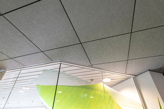 Design Decoration | Rockfon Color-all® by Rockfon | Mineral composite panels