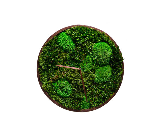 Moss Clock With Ball Moss And Provence Moss 45cm by Ekomoss | Clocks