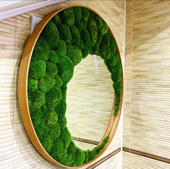 Mirror With Ball Moss by Ekomoss | Mirrors
