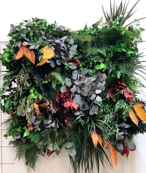 Rectangular Moss Picture | Jungle Picture With Preserved Plants And Flat Moss 80X40 by Ekomoss | Sound absorbing objects