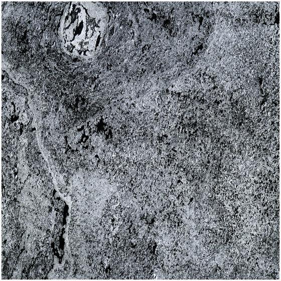 Translucent   Nero by Slate Lite   Wall veneers