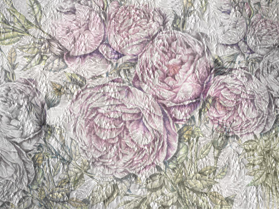 Scent of silence   Poppy R by Walls beyond   Wall coverings / wallpapers