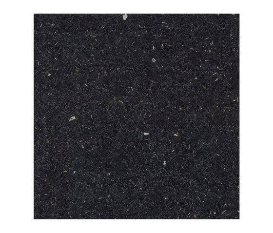 Flash Black by Pfleiderer | Wood panels