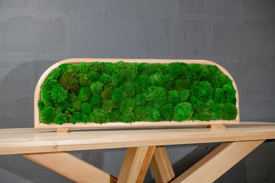 Moss Devider | Table moss devider by Ekomoss | Sound absorbing table systems