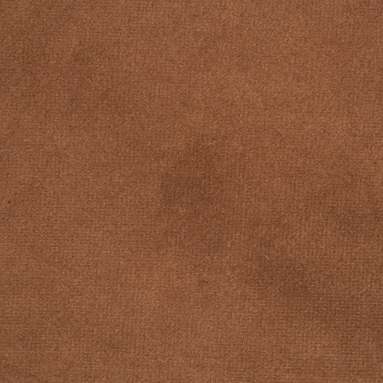 Green - Smooth Velvet by The Fabulous Group | Upholstery fabrics