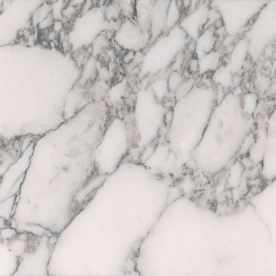 Our Stones   arabescato vagli by Lithos Design   Natural stone panels