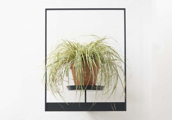 TEEpots Floating Plant Shelf by Teebooks   Flower displays