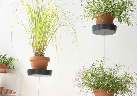 TEEpots Plant Pot Stand by Teebooks   Flower displays