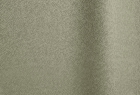 Bizon 141 by Futura Leathers   Natural leather
