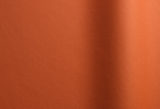 Sierra 100 by Futura Leathers | Natural leather