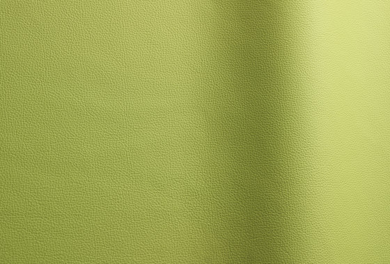 Sierra 407 by Futura Leathers   Natural leather