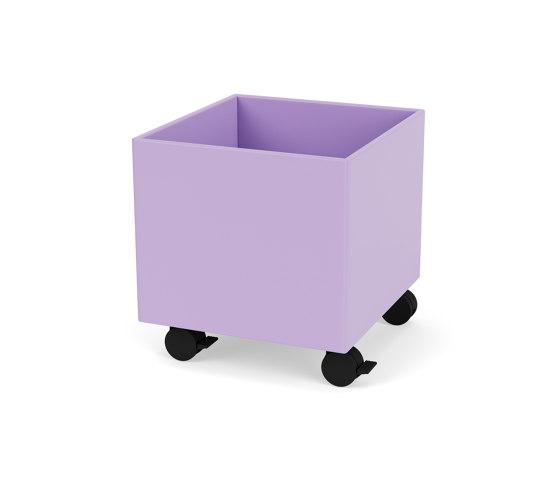 Living Things | LT3861 – plant and storage box |Montana Furniture by Montana Furniture | Storage boxes