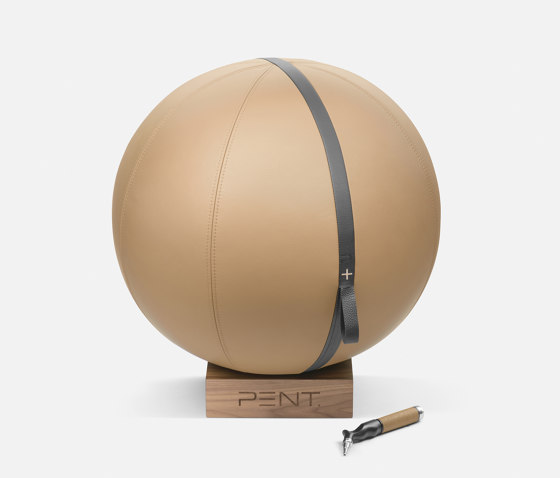 MESNA™ Fitness Ball 65 cm by Pent Fitness   Fitness tools