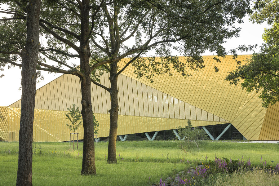 Going for Gold: archi5's La Fontaine Multisports Complex | News