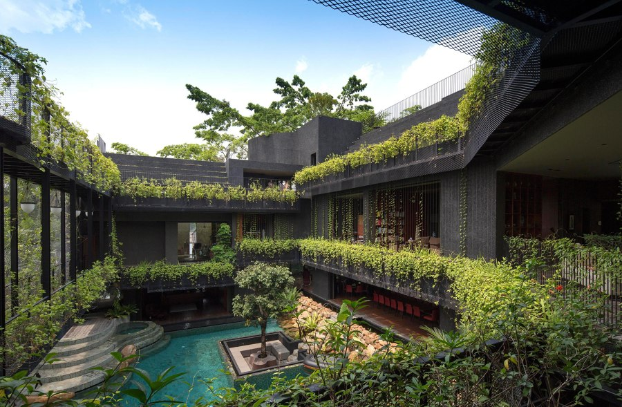 Things are looking up: roof gardens | News