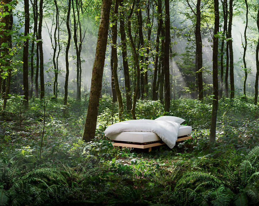 Sustainable sleep: Roviva | News