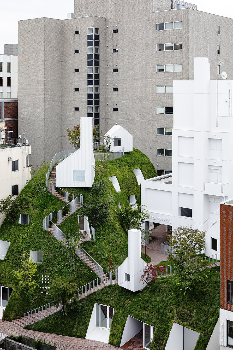 Incorporating nature into the built environment   News