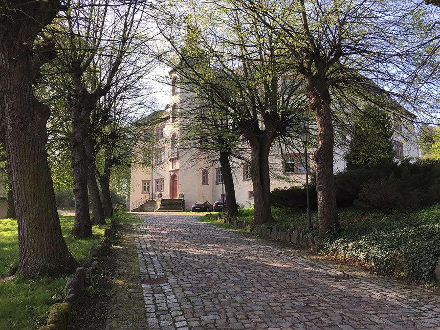 Wingburg as the mediator between rooms | News