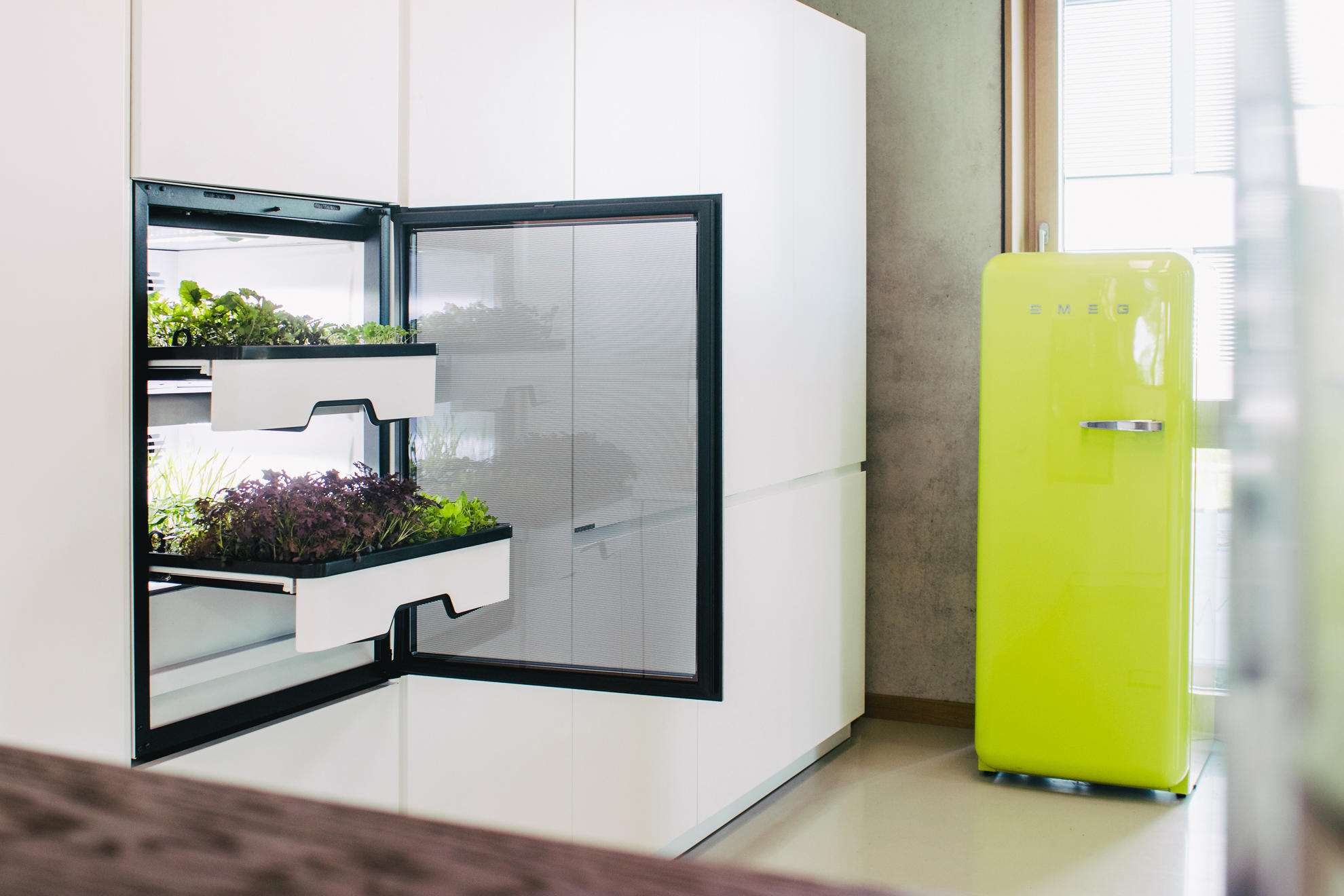 Are you getting your greens?: Agrilution Plantcube
